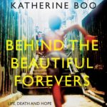 behind-the-beautiful-forevers